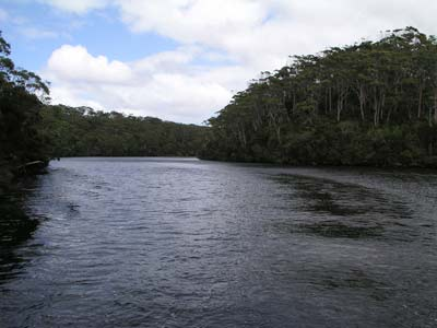 The Arthur River