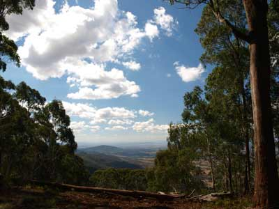 Breeza Lookout