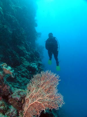 Chinamans Reef