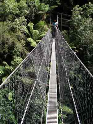 The Montezuma Falls bridge