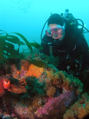 Kelly and a cuttlefish
