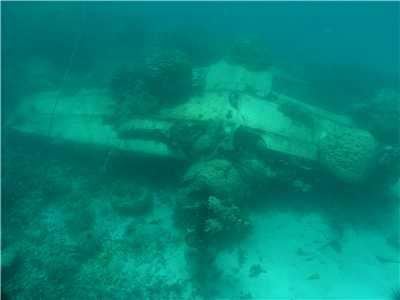 Michael Mcfadyen S Scuba Diving Web Site